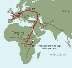 mtDNA Karte